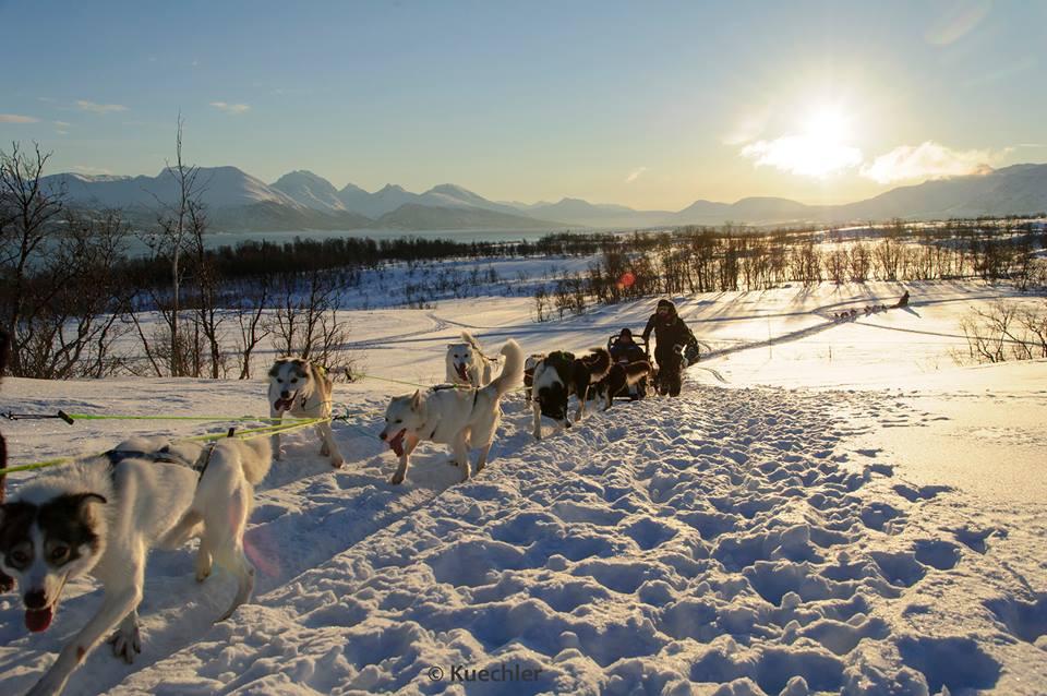 Arctic Challenge - Sposnsorship
