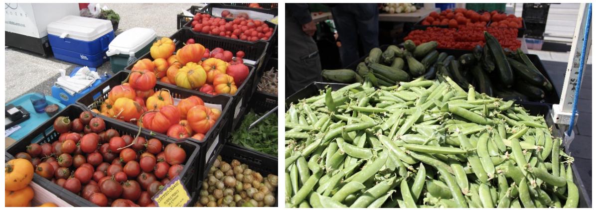 Earth Day Tips farmer's markets