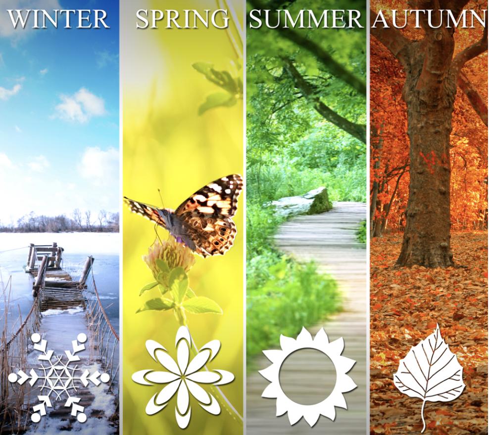 Different colour tones for the each season