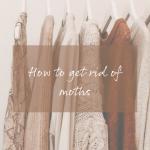 Get rid of moths